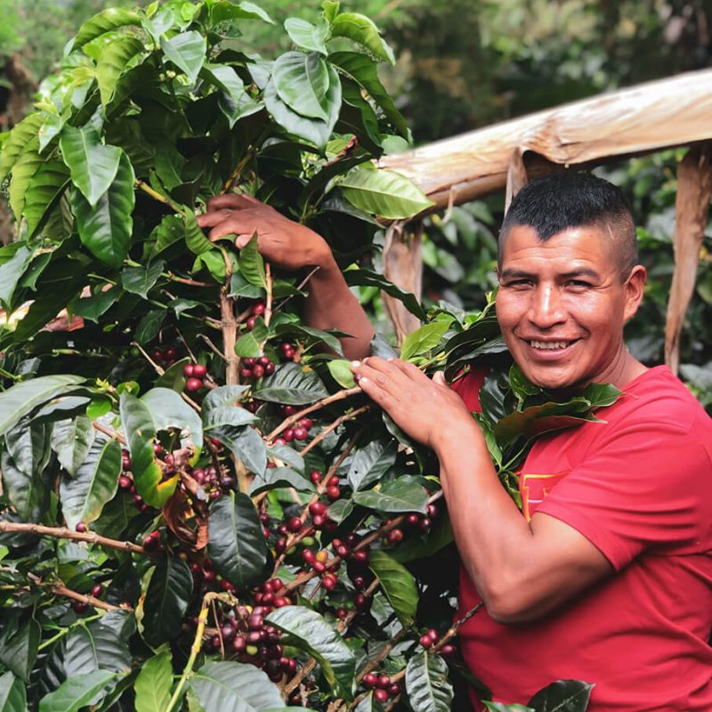 Local coffee farmer at Colombia - Opal Coffee